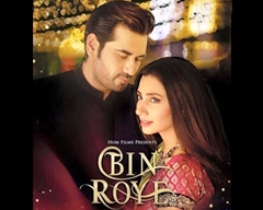 Review of Film Bin Roye