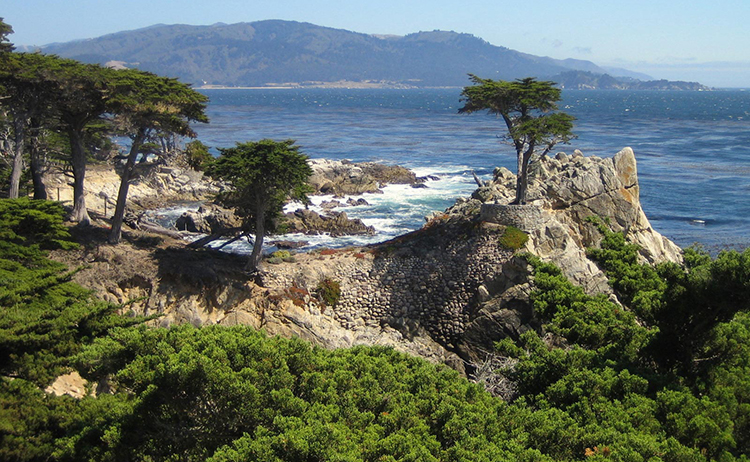 California's 17-Mile Drive and Carmel