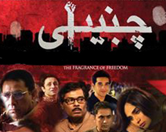 FRAGRANCE OF FREEDOM: CHAMBAILI AND THE NEW LOLLYWOOD