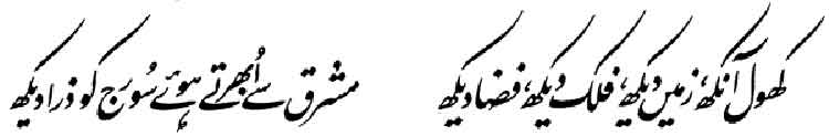 Iqbal, the Visionary - Allama Muhammad Urdu Poetry