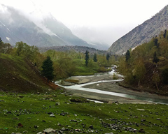 LUMS Tour to Naltar Valley