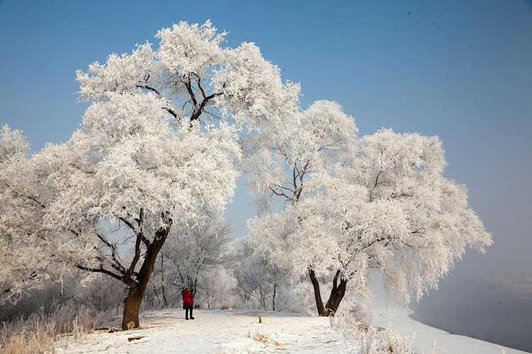Rime frosts the landscape in Changchun City, Jilin province - Visit the Best Snowscapes in China