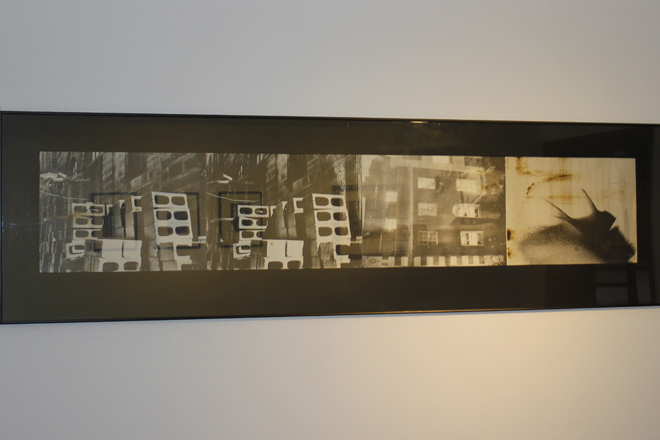 Alia Bilgrami, 2011, 16 x 70 inches.4 photo emulsion/liquid light prints on Canson conservation board framed as a quartet.