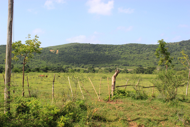 Countryside of Trinidad