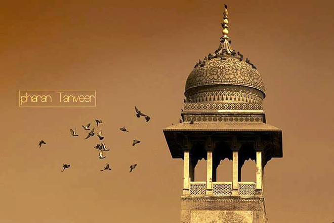 Photography by Pharan Tanveer