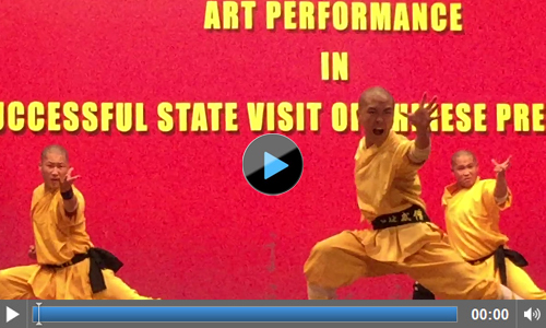 Chinese Martial Art Shaolin Monks Performance Video