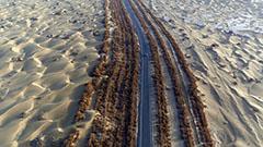 Along the Silk Road: Hidden Mysteries of the Taklamakan Desert