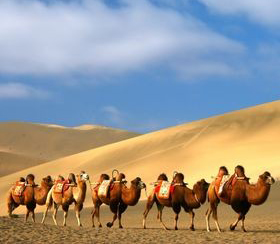 The Ancient Silk Road: A Channel that Linked the West and East