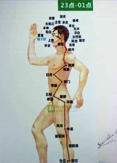A diagram of the human body's pressure points