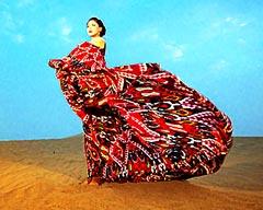艾德莱斯出天山 新疆特色文化走在创新之路上