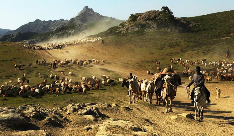 新疆维吾尔族、哈萨克族、柯尔克孜族的民间达斯坦