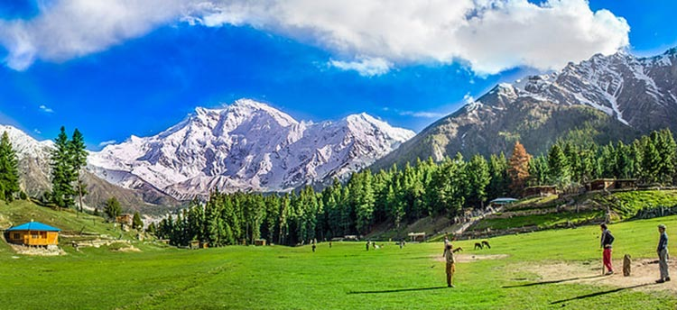 From San Francisco to Hunza - Fairy Meadows
