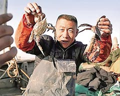 Jiaozhou Fisherman Becomes