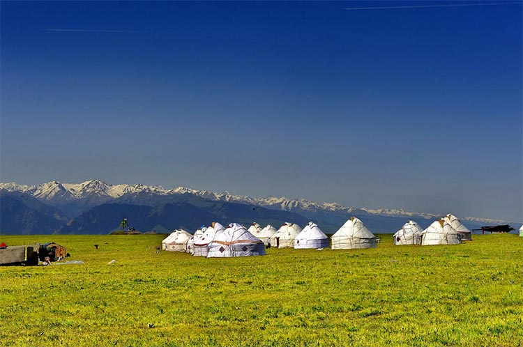 White Yurts in West Kalajun
