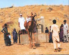 纳西姆·艾哈迈德–在塔尔沙漠维持着生命的循环