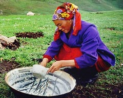 Organic Food of China