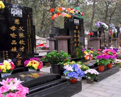 Qingming Festival (The Mourning Day), 2018