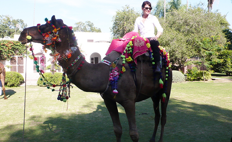 Enjoying a camel ride near Lahore City - Regula Bubb: The Trailing Spouse and High-Life in Pakistan