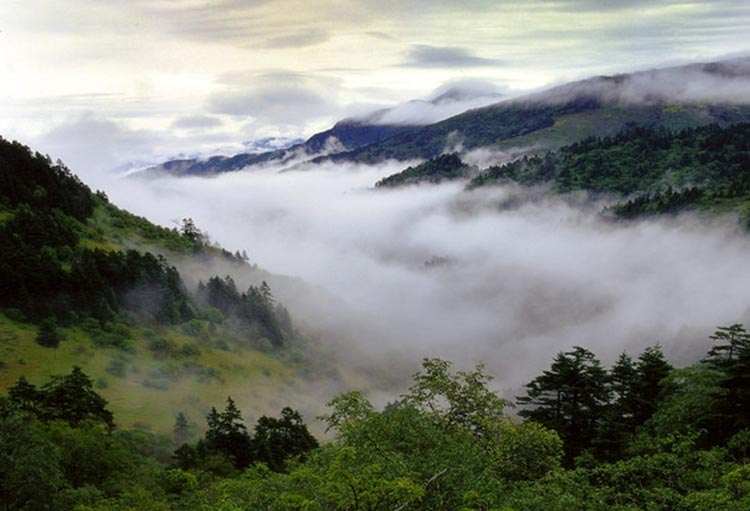 Shennong Valley - Shennongjia: Land of Colours