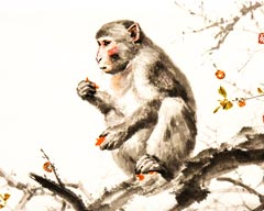 The Monkey in Chinese Culture
