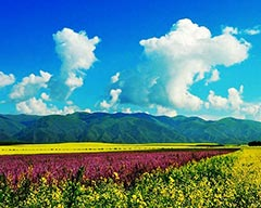 Top Quality Travel Routes in Xinjiang
