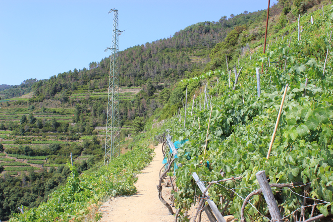 Hiking to a Sanctuary in Cinque Terre