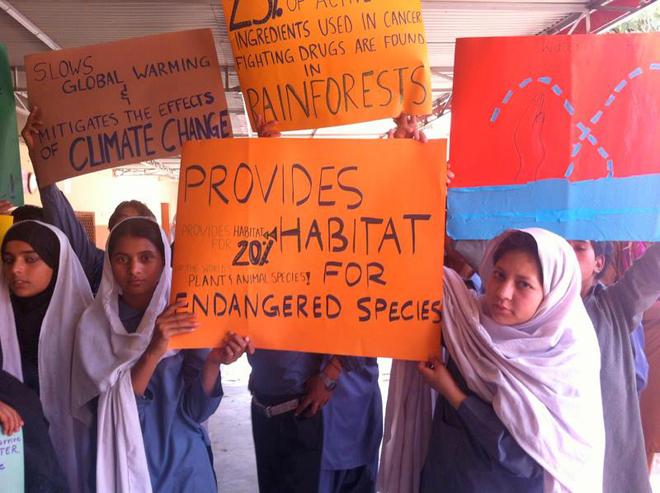 马沙尔示范学校:善举的成功典范