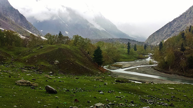 Scenery on the Way to Naltar Lake
