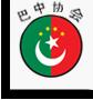 巴基斯坦 - 中国研究院