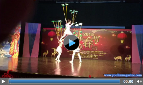 Video of Chinese New Year 2015 celebrations at PNCA Islamabad