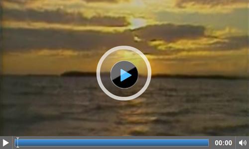 纪录片选录, 切格瓦拉的生活
